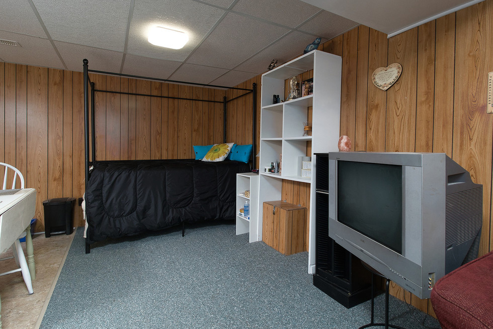 Rec Room - 1 Tanager For Sale