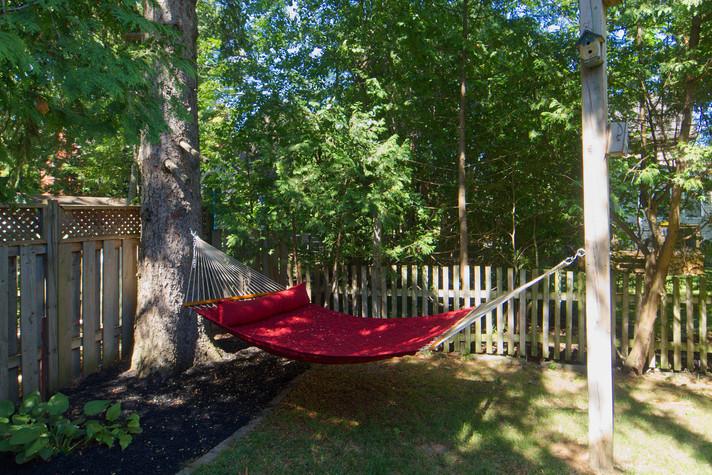 Backyard 2 - 134 David - For Sale