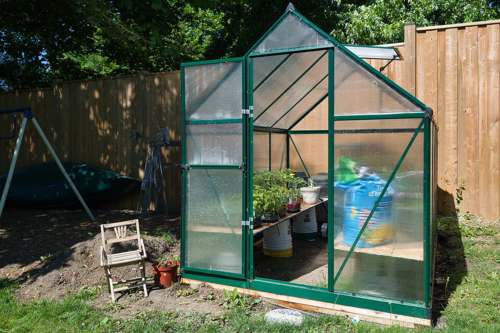 Greenhouse - 1 Tanager For Sale