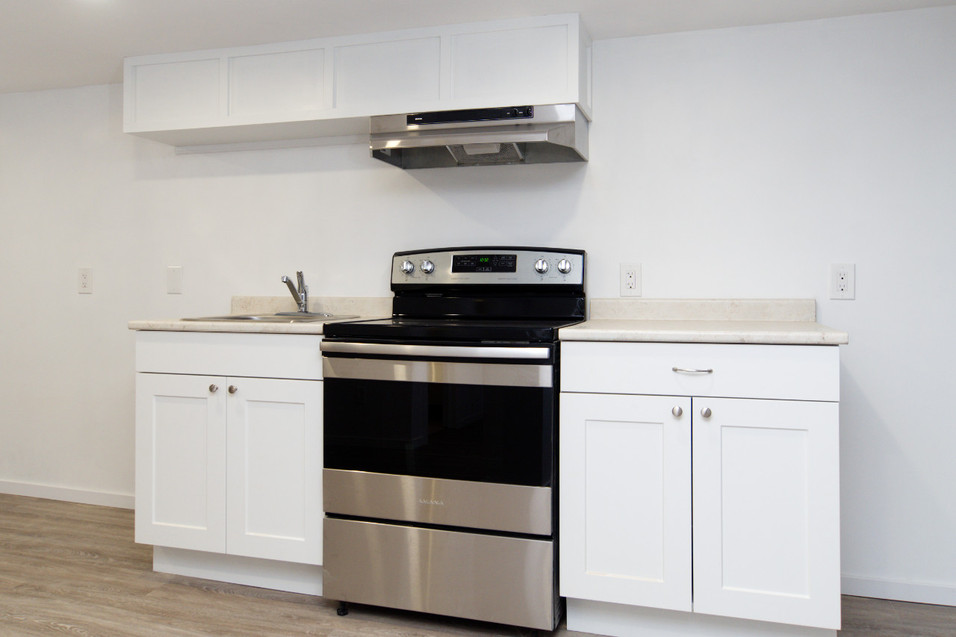 391 Victoria Street South For Sale - Basement Kitchen 2