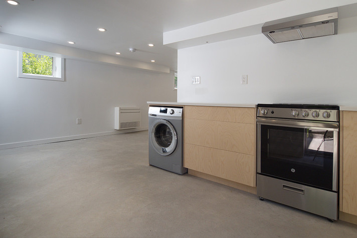 Basement Kitchen - 137 Madison Ave S For Sale