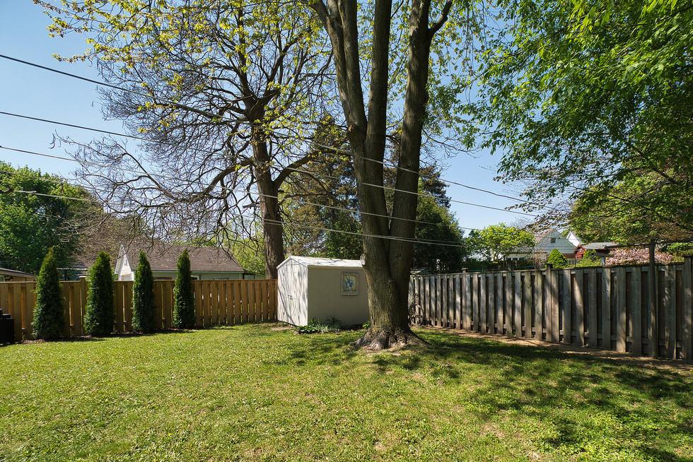 Backyard - 9 Windsor Crescent For Sale