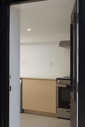 Basement Front Door - 137 Madison Ave S For Sale