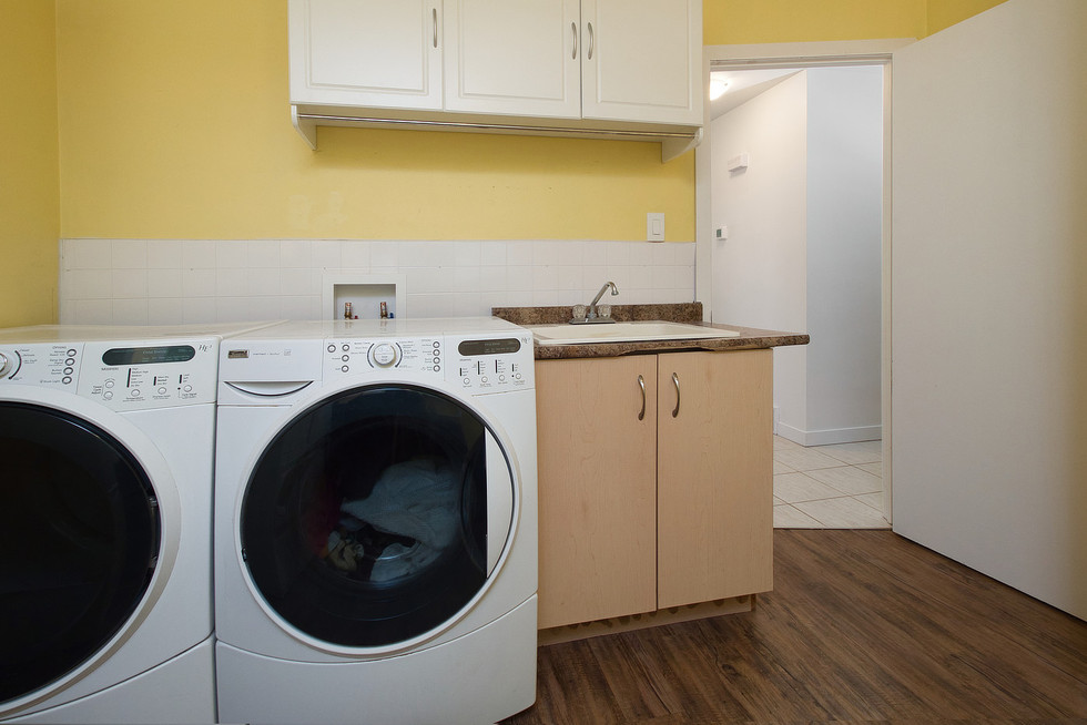 Laundry 3 - 1 Tanager For Sale