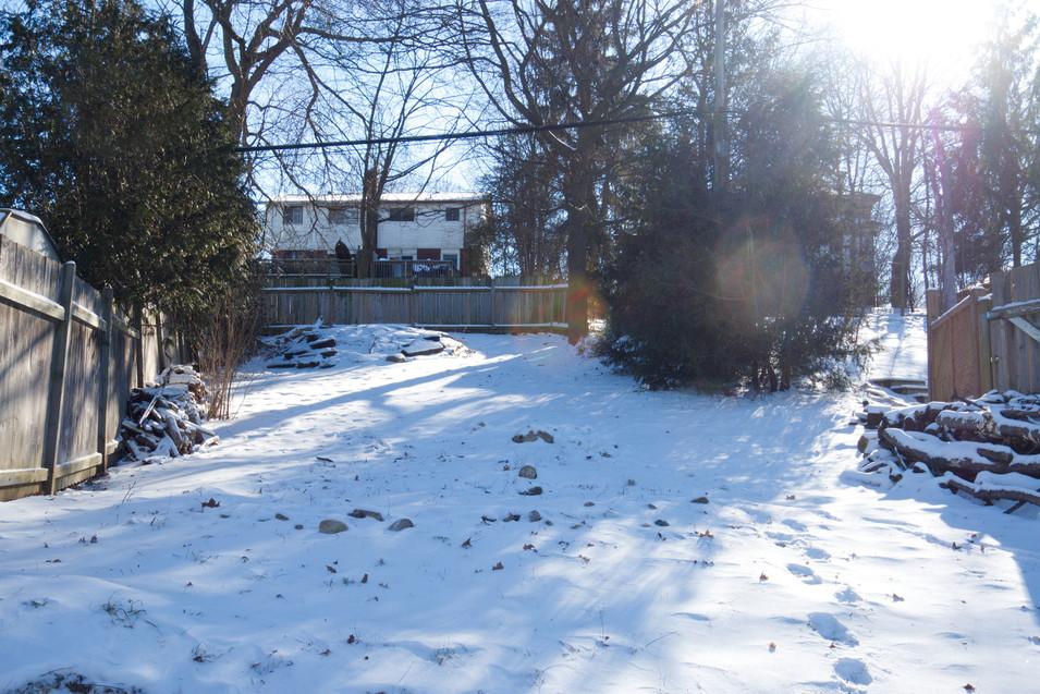 114 Queen St W - Backyard