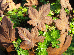 Small leaf bowl, no longer available