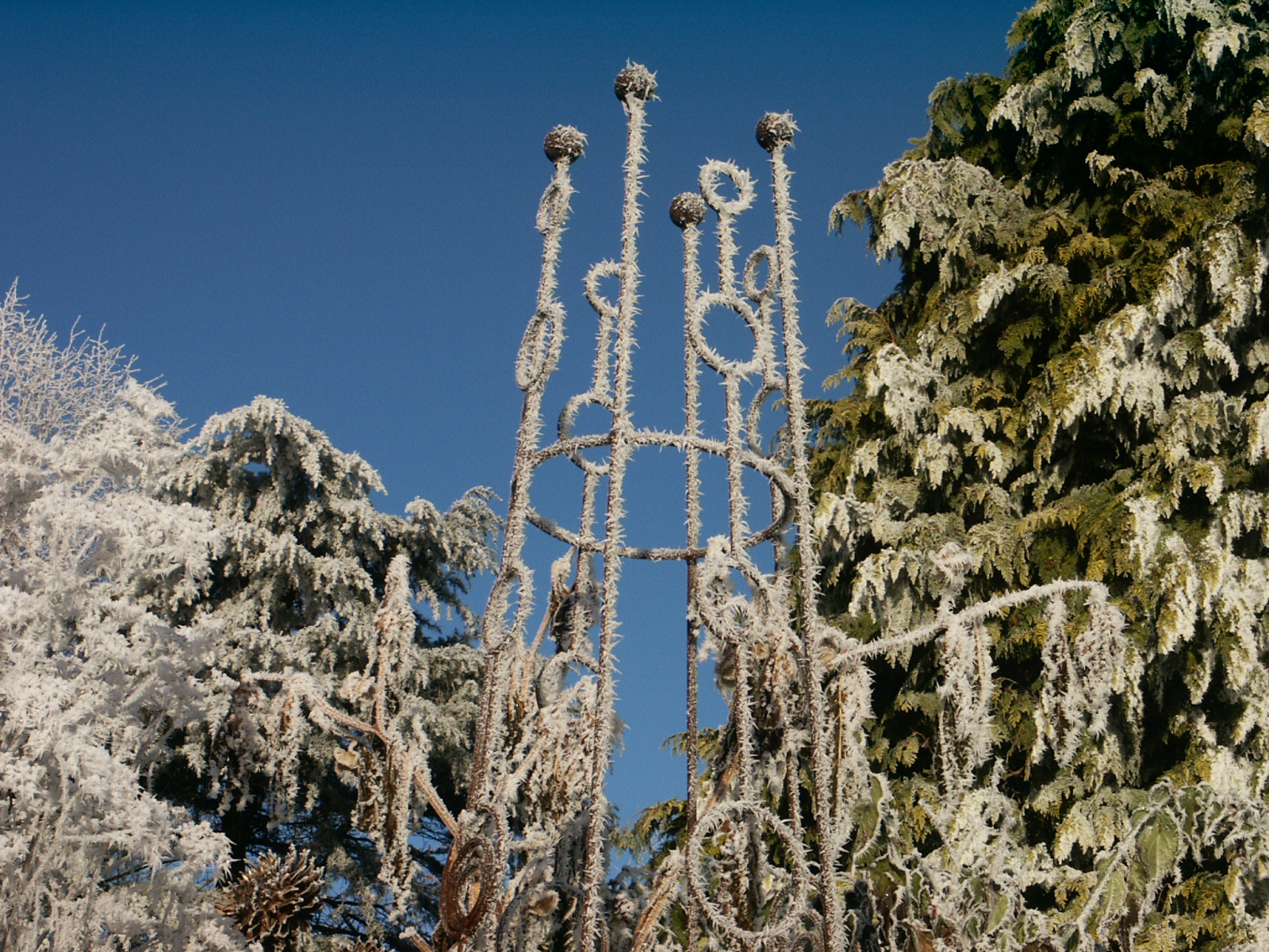 Frosty Obelisk Sweetpea Tower