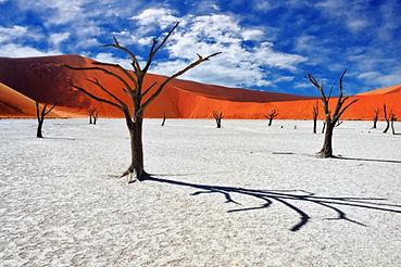 Namibia Salt Pans