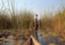 Mokoro Safari in Okavango Delta, Botswan