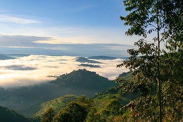 Stunning scenery and landscape in Uganda