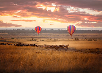 Sunrise over the Masai Mara, with a pair