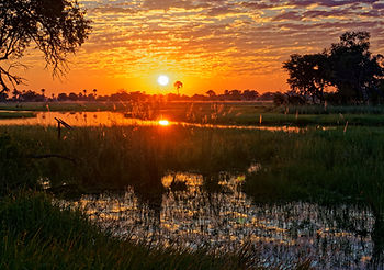 Sunset in the Okavango Delta, Botswana,