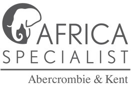 AK Africa Specialist Gray.png