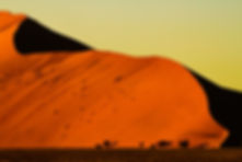 Sossusvlei Sand Dune and shadow! .jpg