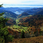 Hiking impressions in the Black Forest i