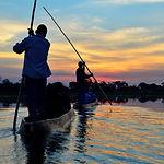 Saling in the Okavango delta at sunset,