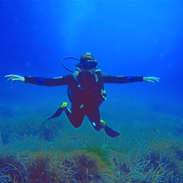 Plongée Castille Corse