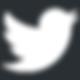 Twitter_Logo_WhiteOnImage.png