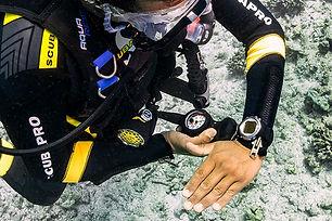 UnderwaterNavigator.jpg