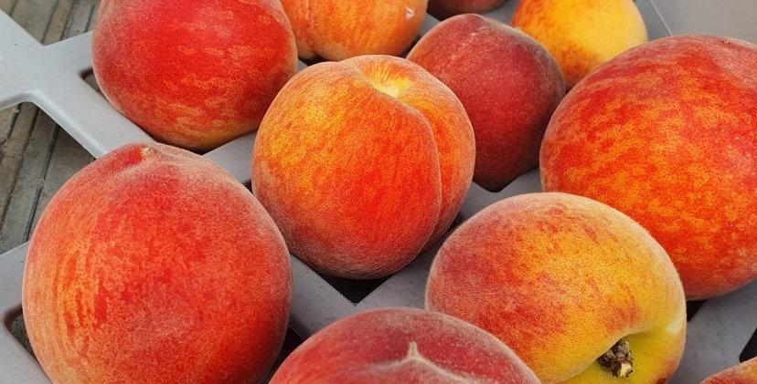HTF Peaches