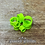 Thumbnail: Green Acrylic Tunnel (Heart)
