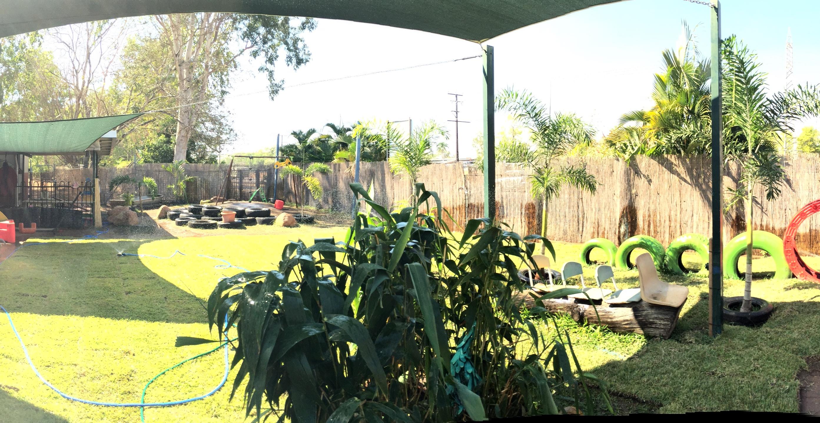 Back yard4