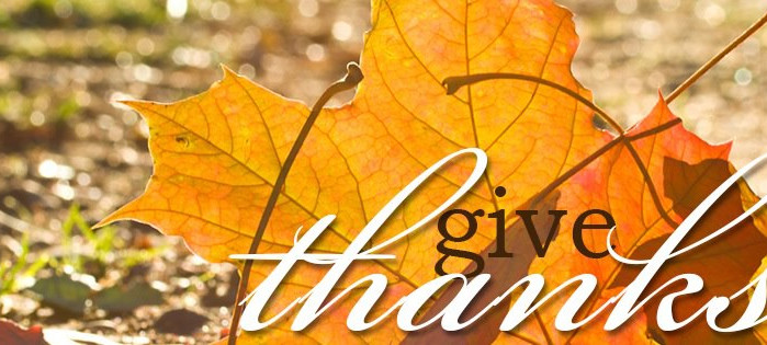 Gratitude Unlocks the Bounty of Life!