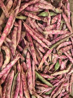 oct beans