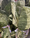 collard sprouts .jpg