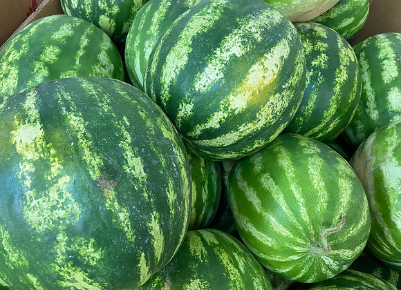 South GA Yellow Watermelon