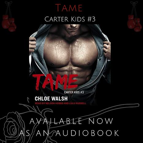tame audio-2.png