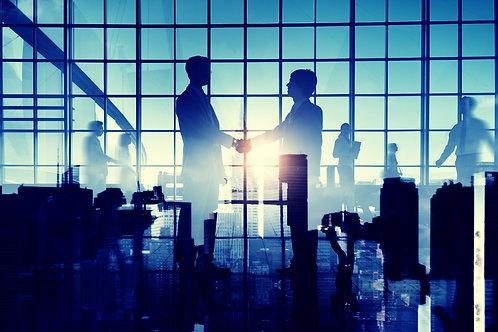 Portal de socios de negocio