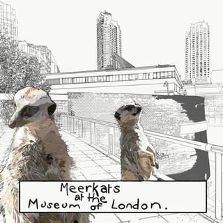 meerkats_edited.jpg
