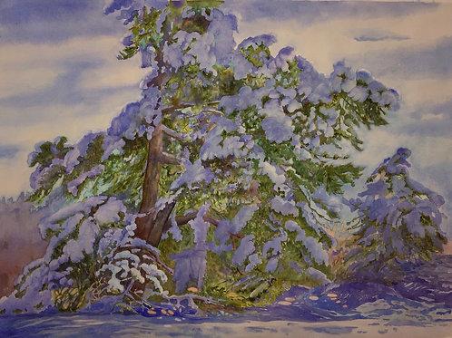 """Spirit of Winter, 40 X 44"""" -exhibited in Maine's Bicentennial Exhibition"""