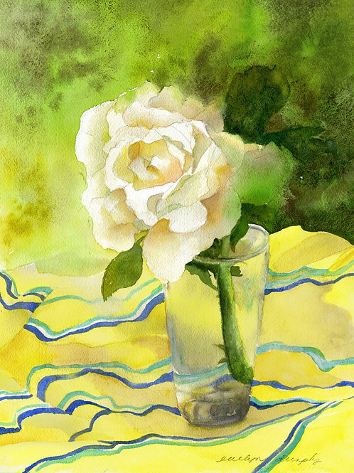 White Rose of Collioure SOLD