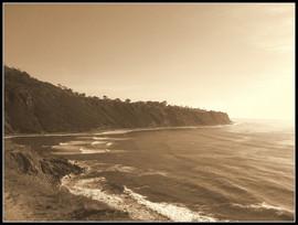 Cove+Spring+2012.jpg