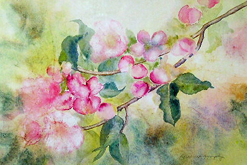 Bough and Apple Blossoms