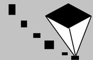 gray Senopsis.png