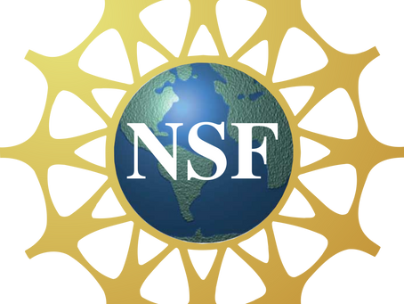 Dining Elevated Nominated for NSF International Food Safety Leadership Award