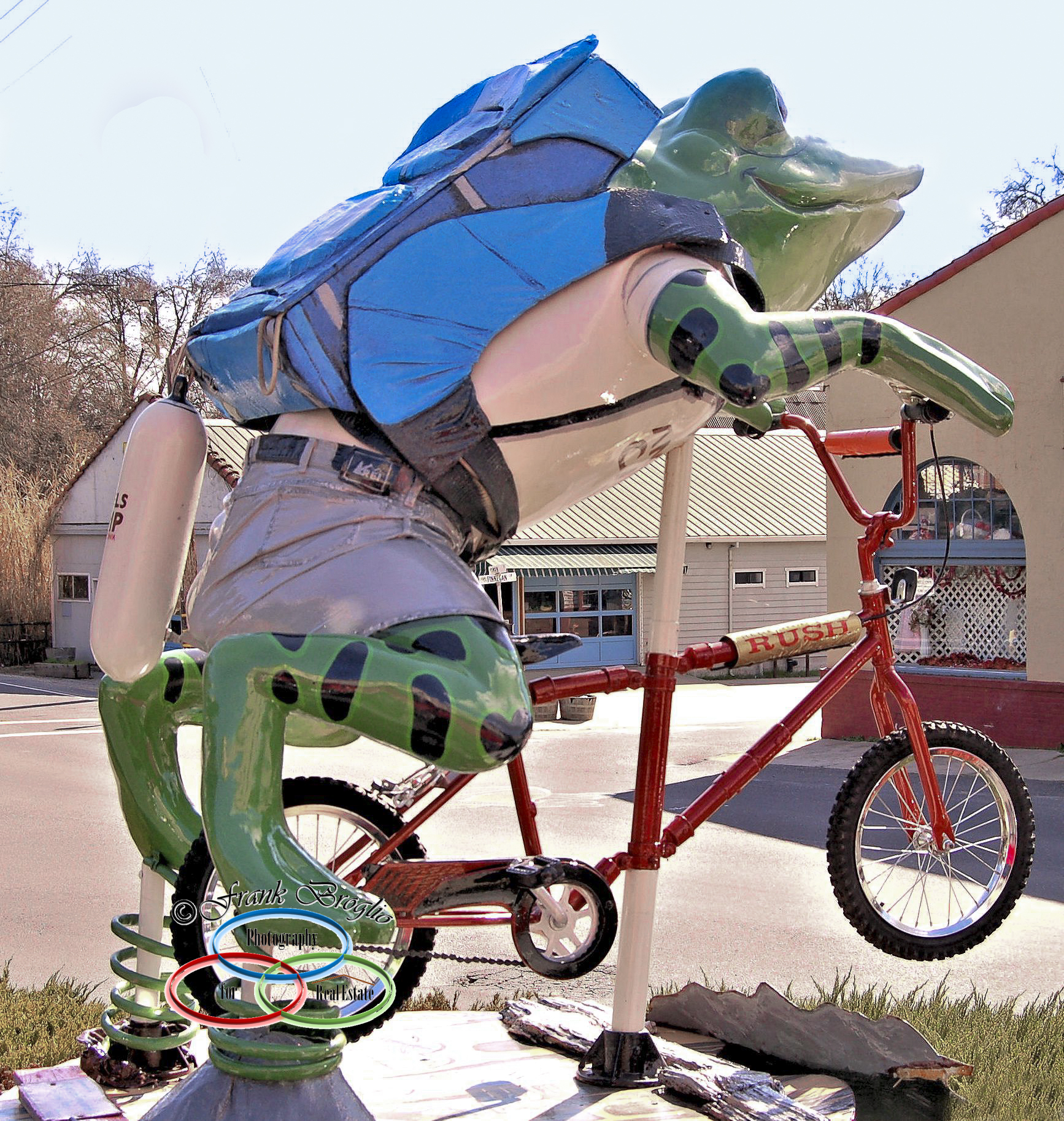 Riding Frog