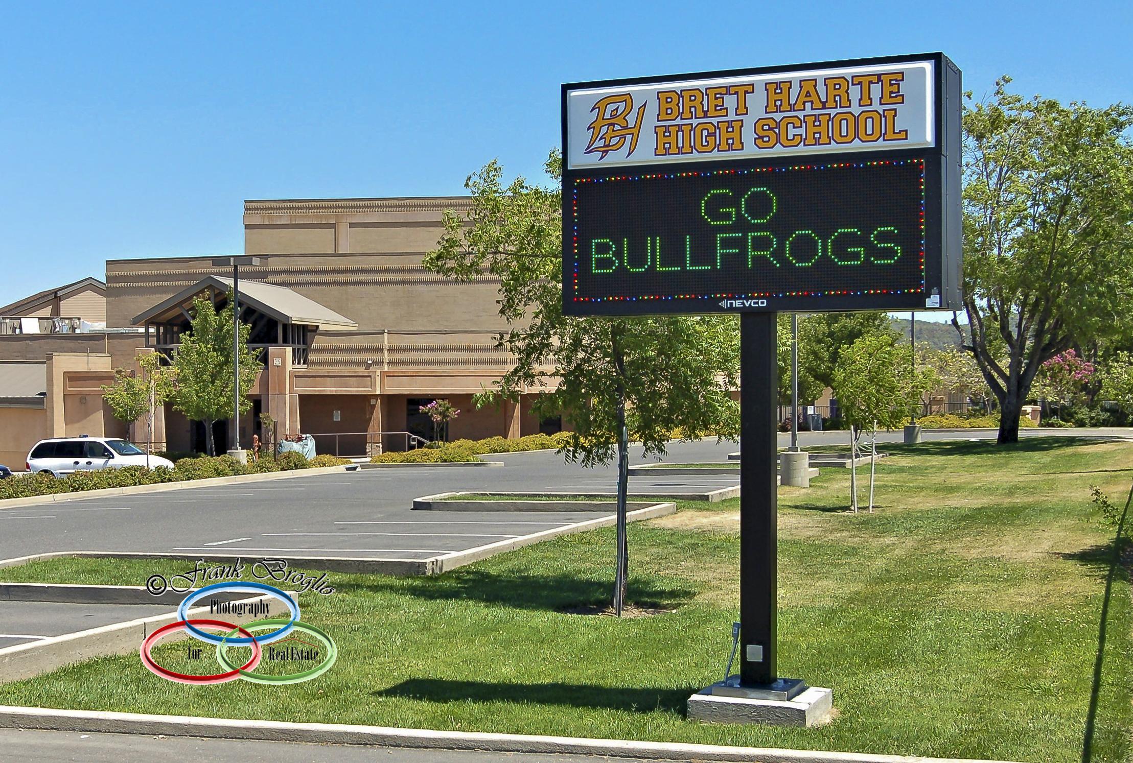 Go Bullfrogs!