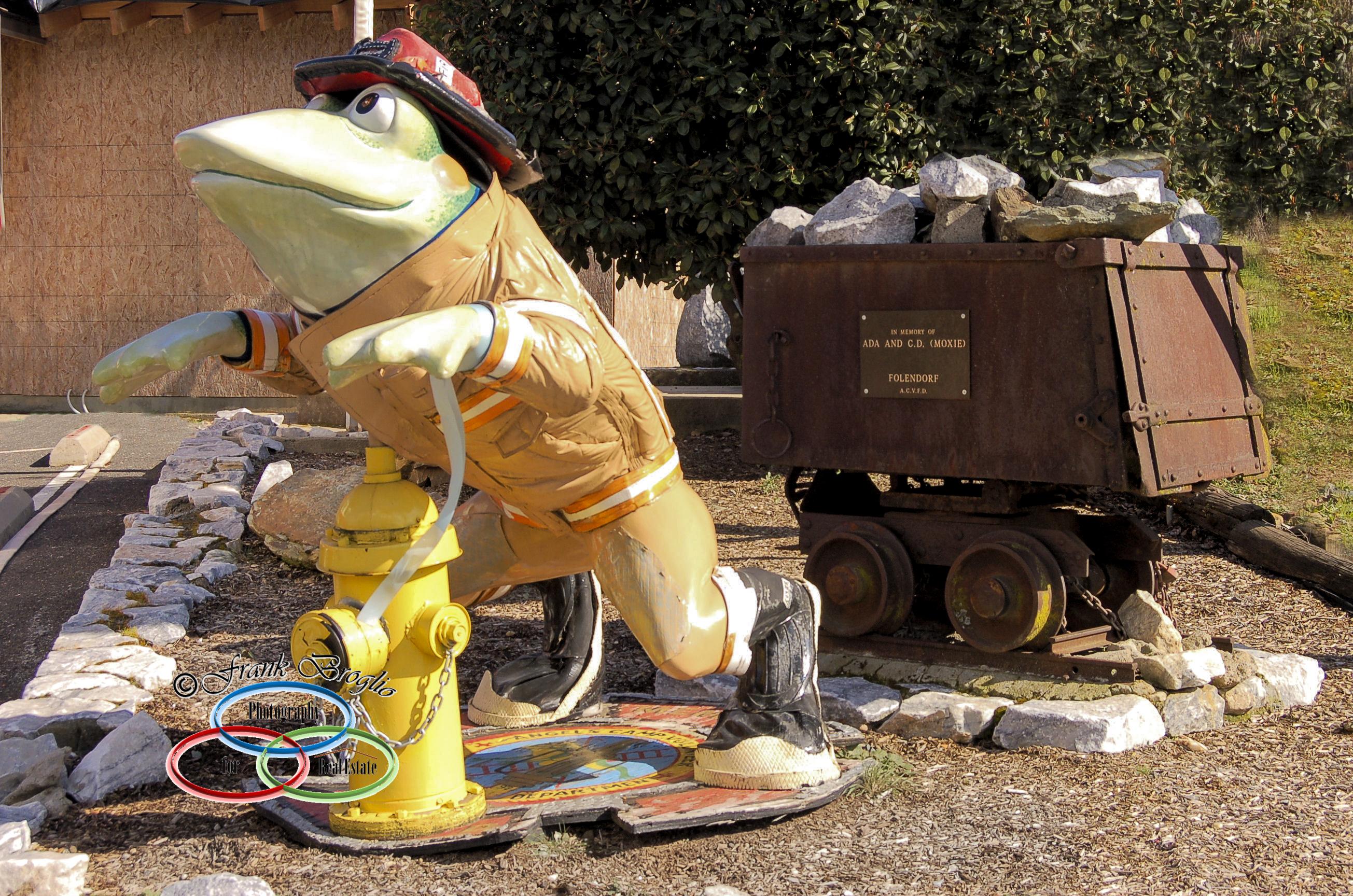 Volunteer Fireman (Frog)