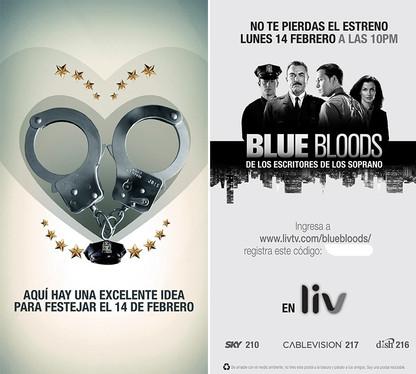 flyer_blue_bloods(curvas)10x18-1 copy.jpg