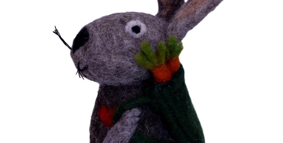 Barry the rabbit