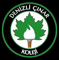 cinar_logo_411.png