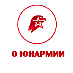О Юнармии Московской области