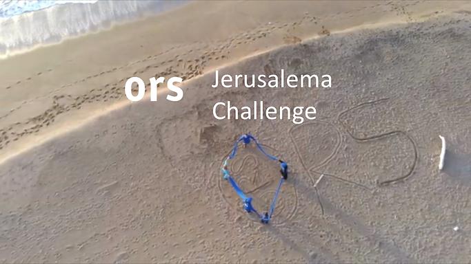 Let's dance: ORS Jerusalema-Challenge