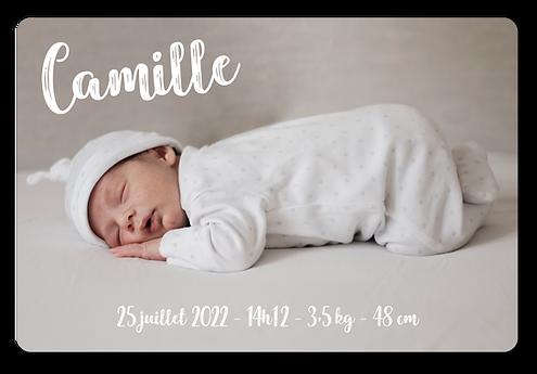 Camille_Plan de travail 1.png