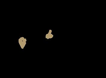 Logo_Ana_Amsterdam-Formato01-01.png