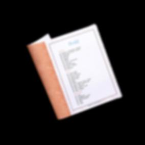 simulacao_checklist-3.png